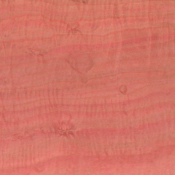 Ormsby Guitars Tonewood pink ivory