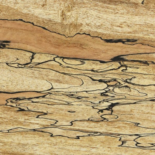 Ormsby Guitars Tonewood spalted maple